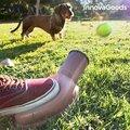Εκτοξευτήρας Μπαλών για Σκύλους Playdog InnovaGoods